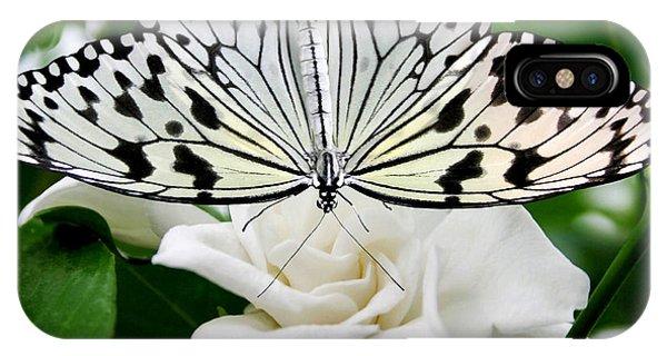 Paperkite On Gardenia IPhone Case