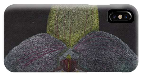 Paphiopedilum Mem. Orchid IPhone Case