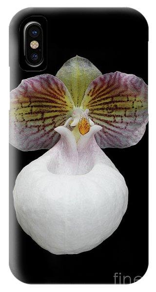 Paphiopedilum Micranthum Eburneum Orchid IPhone Case