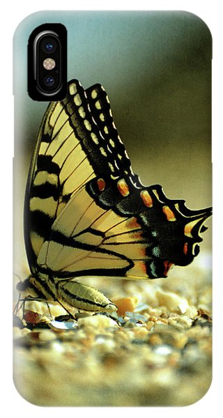 Papilio Glaucus Eastern Tiger Swallowtail IPhone Case