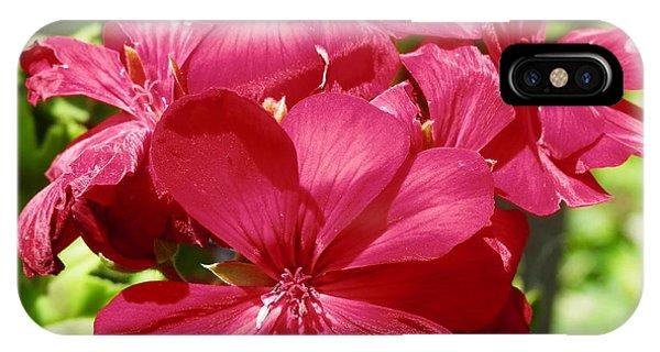 Paradise Bloom IPhone Case