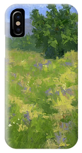 Parkway Spring Oil IPhone Case