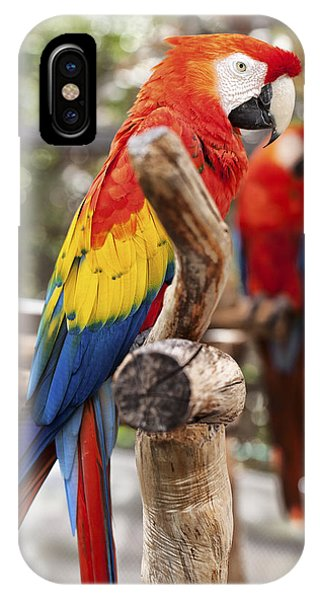 Macaw iPhone Case - Parrot Colors by Jon Glaser