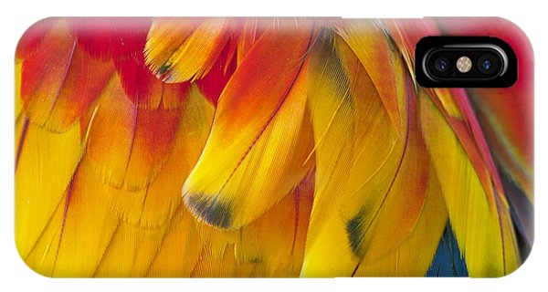 IPhone Case featuring the photograph Parrot Feathers by Ken Barrett