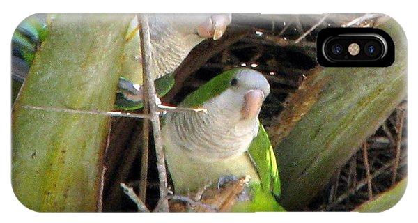 Parrot Pair IPhone Case
