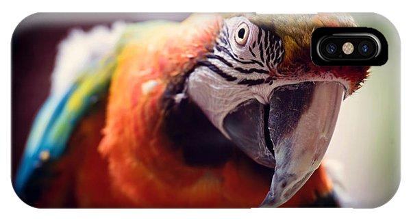 Parrots iPhone Case - Parrot Selfie by Fbmovercrafts