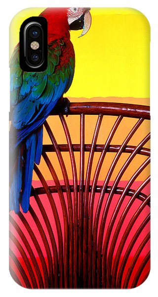 Macaw iPhone Case - Parrot Sitting On Chair by Garry Gay