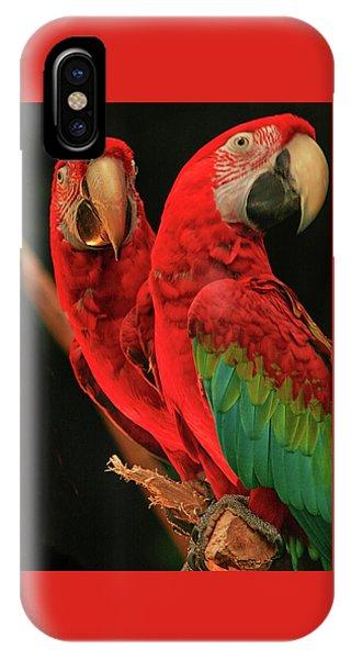 Parrots IPhone Case