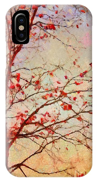 Fall Colors iPhone Case - Parsi-parla - D04c03t01 by Variance Collections