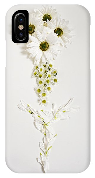 Parts Of A Daisy  IPhone Case