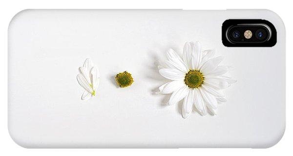 Parts Of A Shasta Daisy IPhone Case
