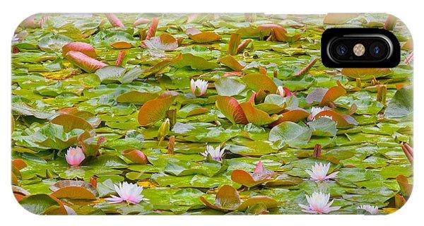 Oyama iPhone Case - Party At Kaloya Pond by Darrel Giesbrecht