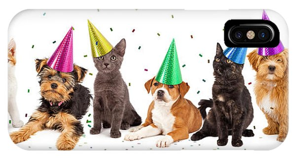 Party Puppies And Kittens With Confetti IPhone Case