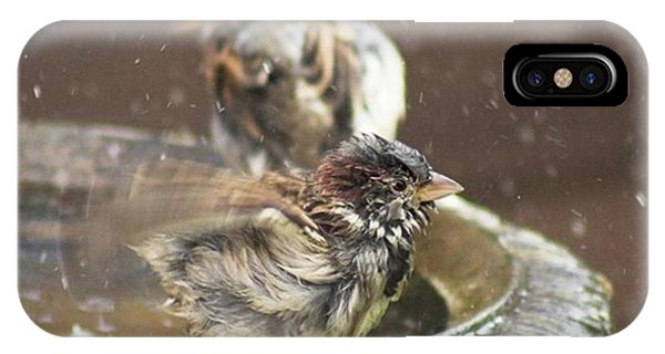Animals iPhone Case - Pass The Towel Please: A House Sparrow by John Edwards