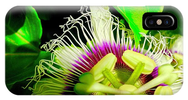 Passion Flower 2 Reflecting IPhone Case