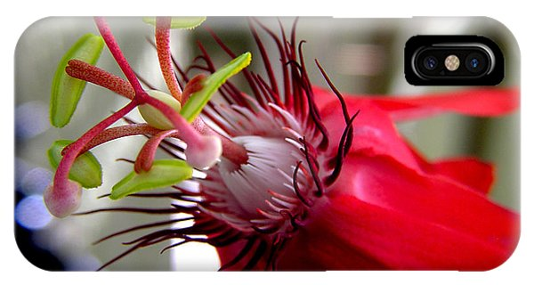 Passion Flower In Red IPhone Case
