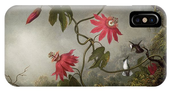 Humming Bird iPhone Case - Passion Flowers And Hummingbird by Martin Johnson Heade