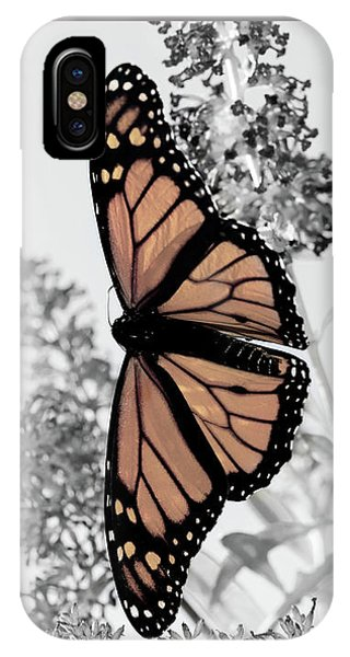 Pastel Monarch On Black And White IPhone Case