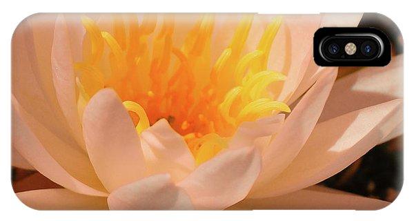 Pastel Pleasures  IPhone Case