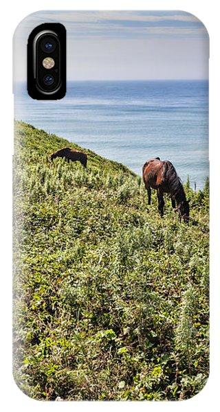 Pasture #2746 IPhone Case
