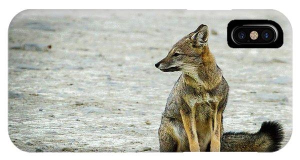Patagonia Fox - Argentina IPhone Case