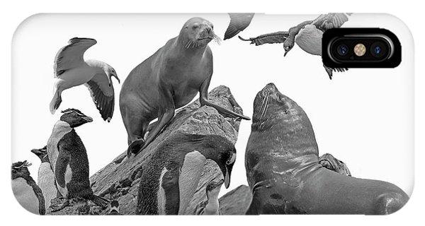 Patagonian Wildlife IPhone Case