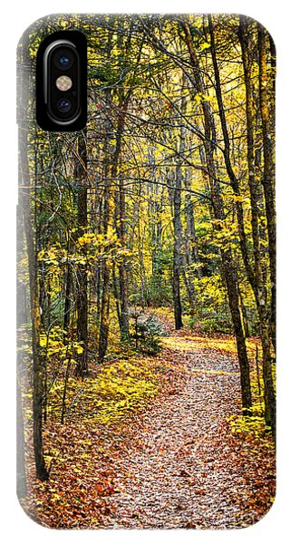 Hiking Path iPhone Case - Path In Fall Forest by Elena Elisseeva
