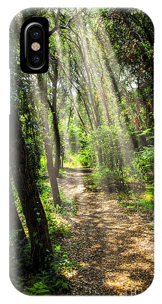 Forest iPhone Case - Path In Sunlit Forest by Elena Elisseeva