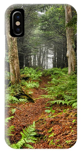 Path In The Ferns IPhone Case