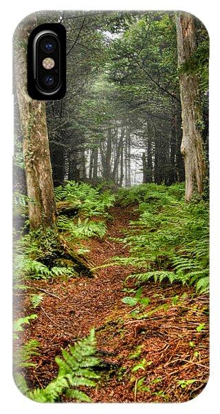 Path In The Ferns IPhone Case