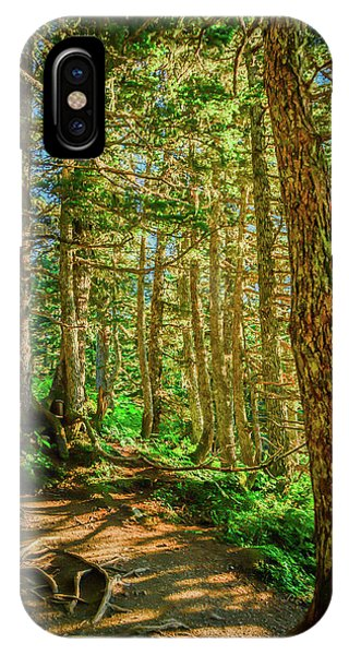 Path In The Trees IPhone Case
