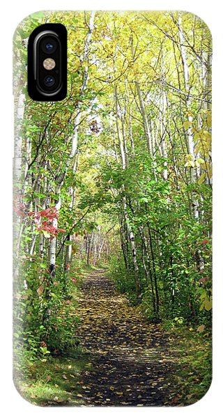Path In The Woods 3 IPhone Case