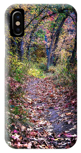 Path Of Leaves IPhone Case