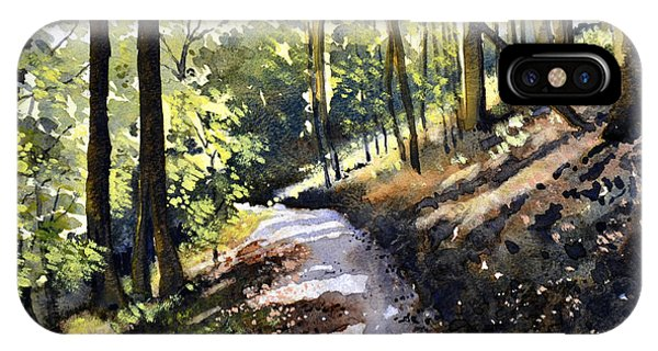 iPhone Case - Path Through Strid Wood by Paul Dene Marlor