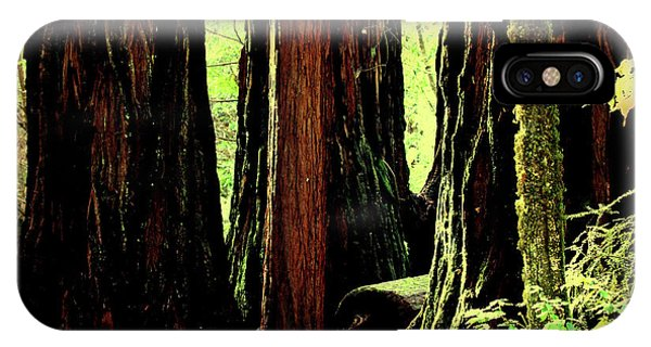 Path Through The Forest Edge . 7d5432 IPhone Case