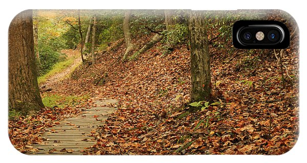 Path To Autumn IPhone Case