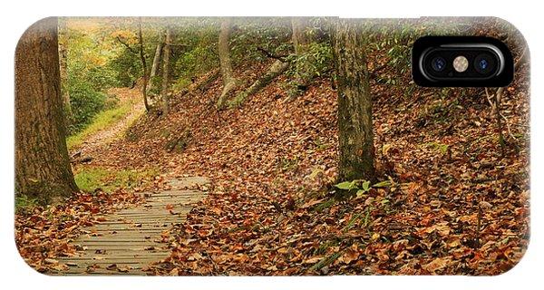Path To Autumn IPhone Case