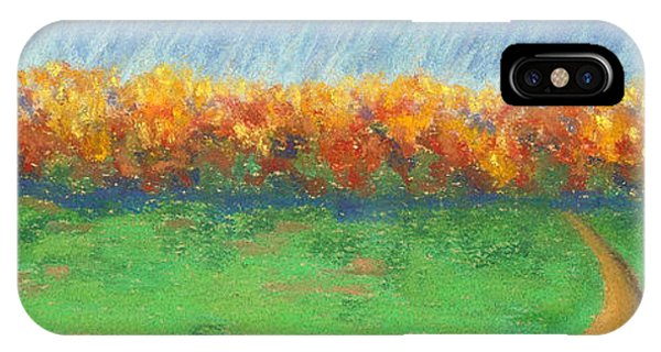 Path To Autumn Trees IPhone Case