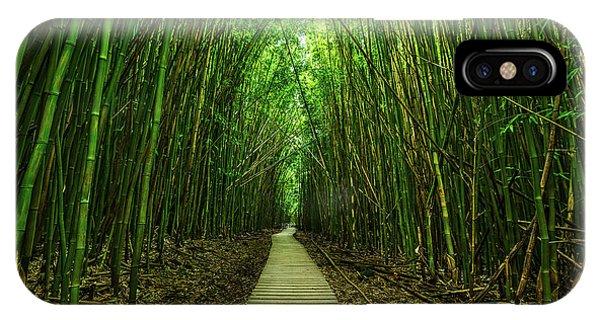 Tree iPhone Case - Path To Zen by Jamie Pham