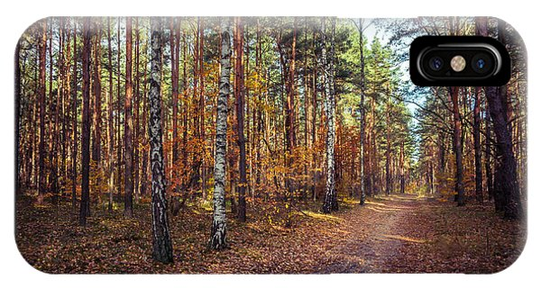 Pathway In The Autumn Forest IPhone Case