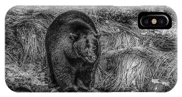 Patient Black Bear IPhone Case