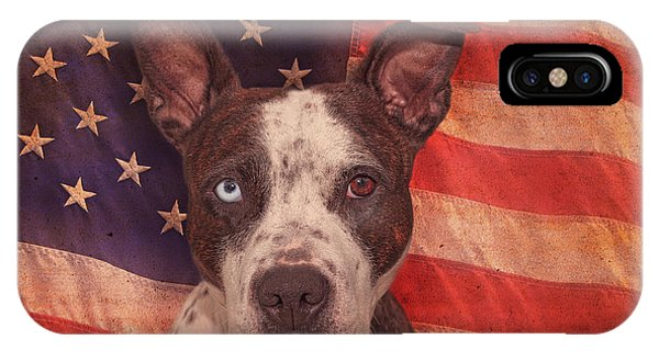 Patriotic Pit Bull  IPhone Case