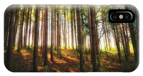 The Nature Center iPhone Case - Peaceful Wisconsin Forest 2 - Spring At Retzer Nature Center by Jennifer Rondinelli Reilly - Fine Art Photography
