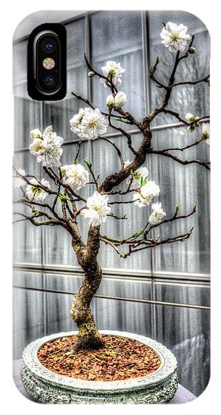 Peach Bonsai Tree IPhone Case