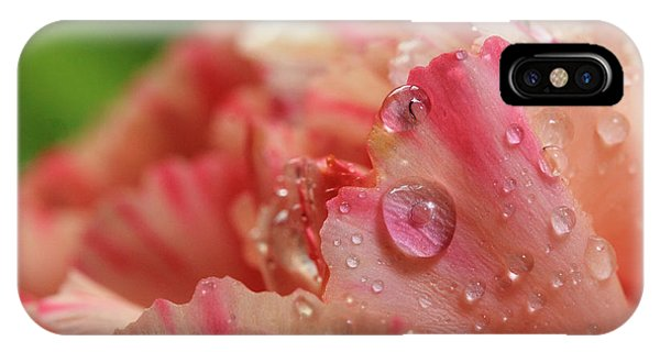Peach And Pink Carnation Petals IPhone Case
