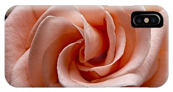 Peach-colored Rose IPhone Case