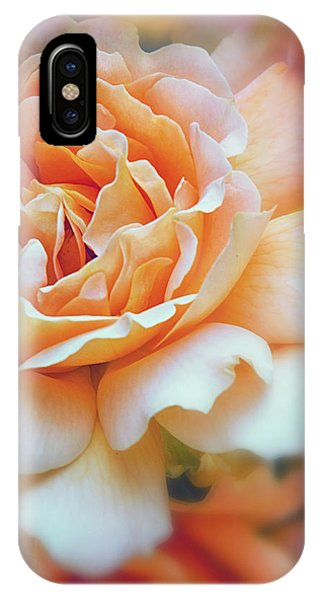 Peach Delight IPhone Case