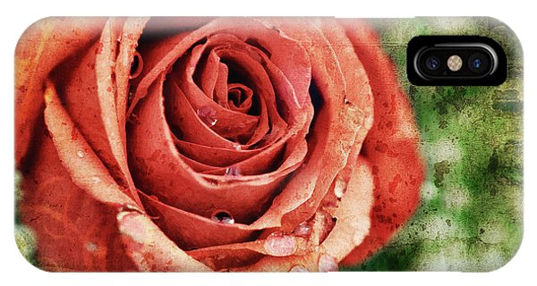 Peach Rose IPhone Case