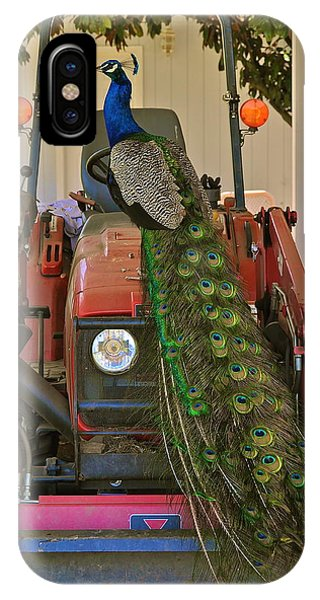 Peacock And His Ride IPhone Case