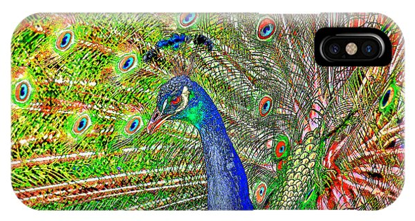 Peacock Fanned Tail Feathers IPhone Case
